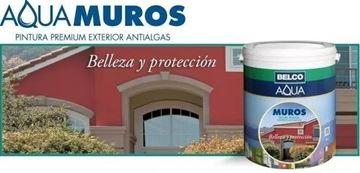 Imagen de Pintura Exterior Antialgas Belco Aqua Muros 1 Lts - Ynter